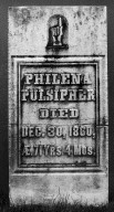 Pulsipher, Philena