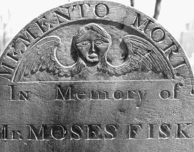 Fisk, Moses