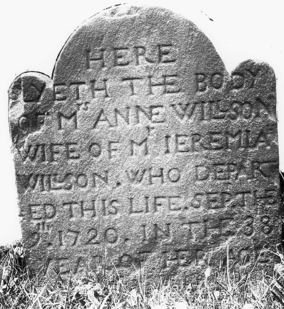 Willson, Anne