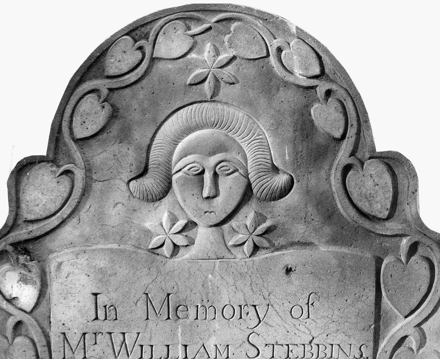 Stebbins, William