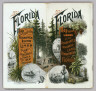 (Covers to) Township map of Peninsular Florida issued by the Associated Railway Land Department of Florida. 1890 ... Copyright, 1890, for the Associated Railway Land Department of Florida, By D.H. Elliott, General Land Agent. Matthews, Northrup & Co. Buffalo, New York.
