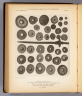 Weights, whorls, etc. Fig. 1. Bronze head mounted on wooden handle, from Peru. Figs. 2-21. Of stone, from various countries. Figs. 22-38. Of stone, Southern California. The Heliotype Printing Co., 220 Devonshire St., Boston. U.S. Geographical Surveys West of the 100th Meridian. (1879)