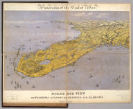Panorama of the Seat of War. Birds Eye View Of Florida And Part Of Georgia And Alabama. John Bachmann, Publisher, 115 & 117 Nassau St., New York. Entered ... 1861 by John Bachmann ... New York. Drawn from Nature and Lith. by John Bachmann.