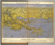 Panorama of the Seat of War. Birds Eye View Of Louisiana, Mississippi, Alabama And Part Of Florida. John Bachmann, Publisher, 115 & 117 Nassau St., New York. Entered ... 1861 by John Bachmann ... New York. Drawn from Nature and Lith. by John Bachmann.