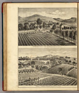 """""""Lachryma Montis."""" Residence of Gen M.G. Vallejo (with) Residence of Nicholas Carriger (both) Sonoma, Sonoma County, California."""