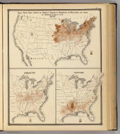 These maps show amount of products raised in proportion to population and acres of improved land in 1870. Hay. Tobacco. Cotton. Copyright 1877, by Syder Van Vechten & Co. (Compiled and published by Snyder, Van Vechten & Co., Milwaukee. 1878)