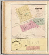 Map of Livermore, Alameda Co., California. Map of Mission San Jose, Alameda Co., California. (Published by Thompson & West, Oakland, Cala., 1878)