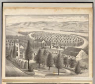 Res. & farm of A. Patterson, Alvarado, Alameda Co., California. (Published by Thompson & West, Oakland, Cala., 1878)