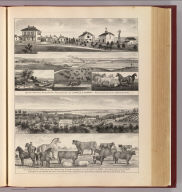 Seven Springs & Milford stock farms, Junction City and Milford, Kansas.