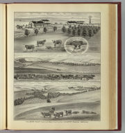 The Berry Ranch -- Chase and Morris counties, Kan. -- D.B. Berry, proprietor. (L.H. Everts & Co., publishers, Philadelphia, 1887)