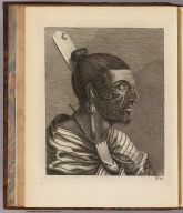 (The head of a New Zealander). No. 13. (London: printed for W. Strahan, and T. Cadell in the Strand, MDCCLXXIII).