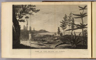 View in the island of Pines. Drawn from nature by W. Hodges. Engrav'd by W. Byrne. No. XXXI. Published Febry. 1st, 1777 by Wm. Strahan in New Street, Shoe Lane & Thos. Cadell in the Strand, London.
