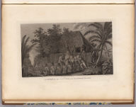 An offering before Capt. Cook, in the Sandwich Islands. Drawn by J. Webber. The landscape engd. by Middiman. The figures by Hall. (London, G. Nicol and T. Cadell, 1785)
