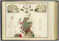 Geological, palaeontological map British Islands.