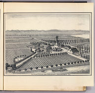 Las Palmas Vineyard, Benj. R. Woodworth, proprietor, Fresno, Cal. (Compiled, drawn and published from personal examinations and surveys by Thos. H. Thompson, Tulare, California, 1891)