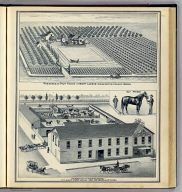 Residence and fruit ranch of Henry Larson, Washington Colony, Fresno. Donahoo and Kennesons' City Livery Stable and Feed Yard, cor. Merced & H Sts., Fresno. (Compiled, drawn and published from personal examinations and surveys by Thos. H. Thompson, Tulare, California, 1891)