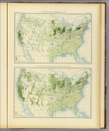 313. Yield of barley per square mile: 1890. 314. Production of barley per acre of improved land: 1890. Julius Bien & Co. Lith., N.Y. (1898)