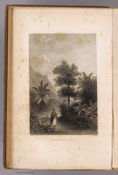 Broom Road, Tahiti. (Sketched by) A.T. Agate. (Engraved by) Sherman & Smith. (Philadelphia: Lea & Blanchard. 1845)