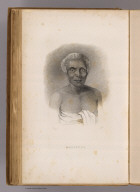 Malietoa. (Sketched by) A.T. Agate. (Engraved by) F. Halpin. (Philadelphia: Lea & Blanchard. 1845)