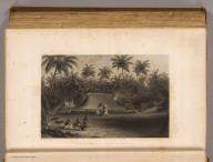 Cocoanut grove at Fakaafo or Bowditch I. Painted by A.T. Agate. Engraved by J. Smillie. Philadelphia: Lea & Blanchard. 1845)