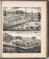 View: Stock Farms and Residences of William M. Curry, Robert L. Thompson, Adams County, Illinois.