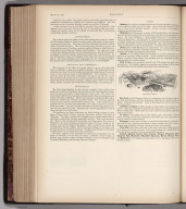 Text Page: (Continues) Wisconsin. Map No. 72