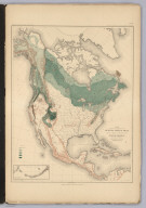 Distribution of the Genus Abies & Picea [The Firs & Spruces] in North America.