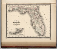 Johnson's Florida. Published by Alvin J. Johnson & Co., New York. 55. Entered according to the Act of Congress, in the year 1863, by A.J. Johnson in the Clerk's Office of the District Court of the United States for the Southern District of New York.