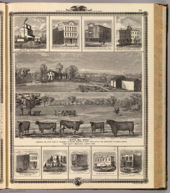Residences, farm, businesses in W. Liberty, Ackley, Cedar Falls, Cedar Rapids, Calmar, Cresco, Ossian and Calmar, Iowa. / Andreas, A. T. (Alfred Theodore), 1839-1900 / 1875