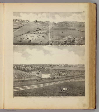 Residences and farms of Eldridge, Harvey and Monk in Winona County, Minn. / Andreas, A. T. (Alfred Theodore), 1839-1900 / 1874