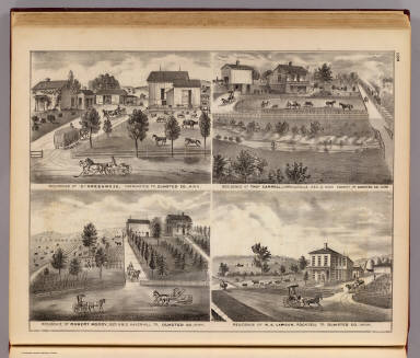 Residences of Greenwood, Carroll, Moody and Lawson in Olmsted Co., Minn. / Andreas, A. T. (Alfred Theodore), 1839-1900 / 1874
