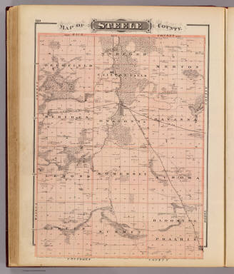 Map of Steele County. / Andreas, A. T. (Alfred Theodore), 1839-1900 / 1874