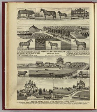 Orchard Hill and Cedar Grove stock farms, Octagon Hotel, Valley Falls, Kan. / L.H. Everts & Co. / 1887