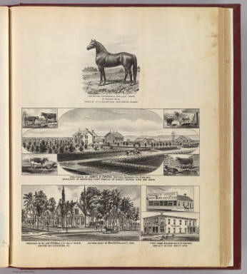Clydesdale stallion; Oxford & Abilene residences, bldgs. / L.H. Everts & Co. / 1887