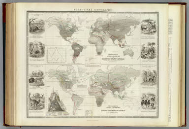 Zoological geography. Geographical division & distribution of Rodentia, gnawing animals, constructed from the tables & notes of Geo. R. Waterhouse, Esqr. by A.K. Johnston, F.R.G.S. Geographical division and distribution of Ruminantia, ruminating animals ... Engraved by W. & A.K. Johnston. William Blackwood & Sons, Edinburgh & London. (1856)