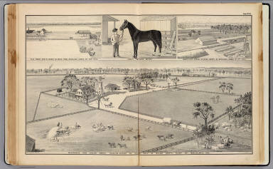 Woodland ranches. / Galloway, W. T. (William T.); De Pue & Company / 1879