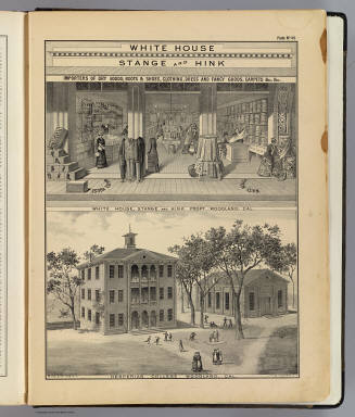 Woodland store, college. / Galloway, W. T. (William T.); De Pue & Company / 1879