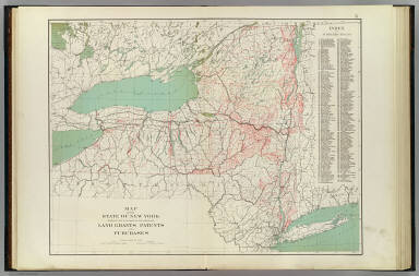 Map of the state of New York showing the location of the original land grants, patents and purchases. Copyright 1895, Julius Bien & Company, N.Y.