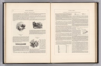 (Text Page) Physical Phenomena of the Globe. Hydrography (continued).
