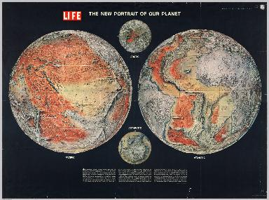 The New Portrait of our Planet. Life.