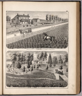 View: Farm Residences of S.G. Bliven, Alice L. Tandy, Adams County, Illinois.