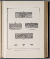 Plate XXVII: Detailed section of Lahontan sediments, Truckee Canon, Nevada