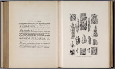 Plate XXXIII: Illustrations of the structure of thinolite