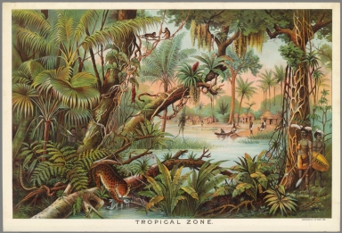 Tropical Zone.