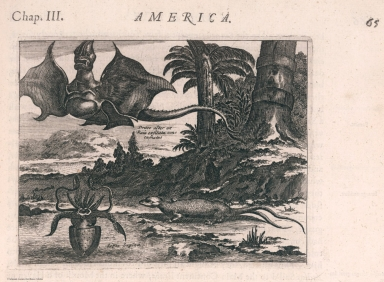 View: Americus Vesputius found a convenient Haven, with ... Sea-Spiders, and horrible Dragons.