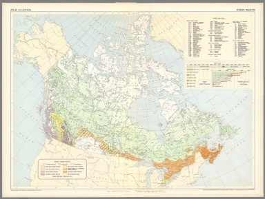 (39) Forest regions.