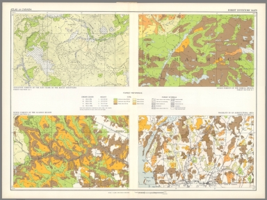 (40) Forest inventory maps.