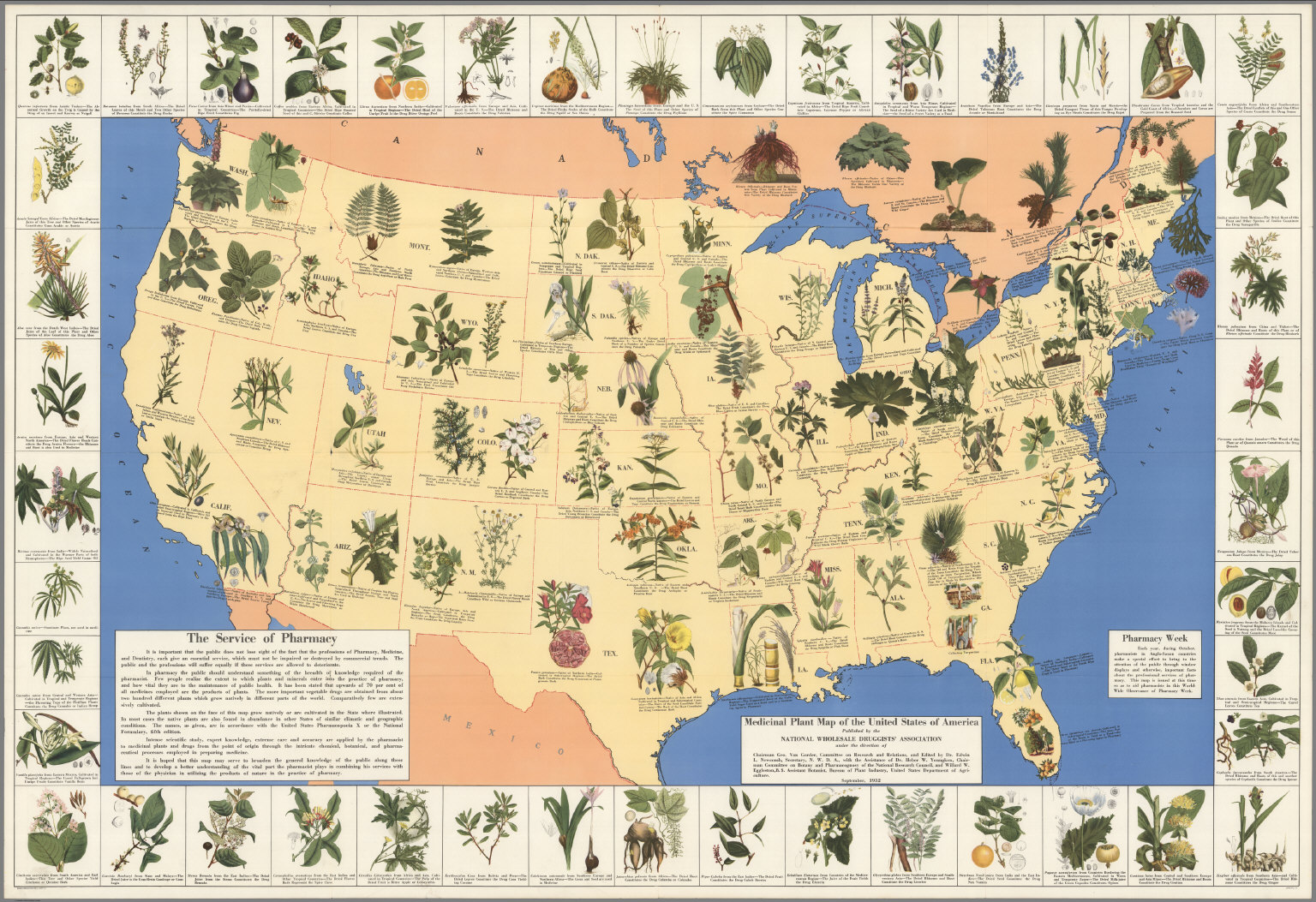 Herbs And Wildcrafting - Us planting map