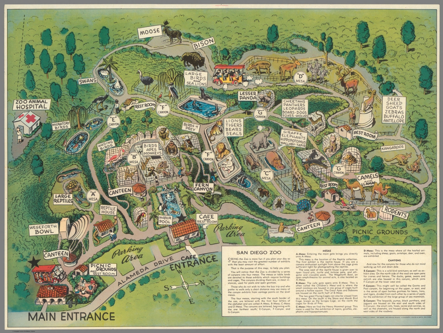San Diego Zoo David Rumsey Historical Map Collection - San diego zoo map